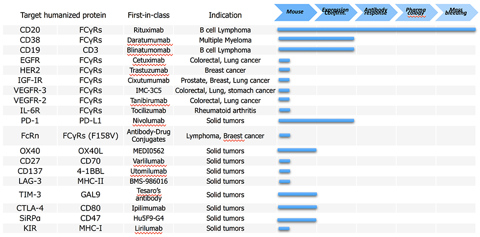 Pipeline of Human Genome Mice | 特殊免疫研究所 Institute of Immunology