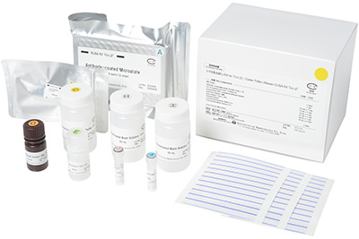 "Cedar Pollen Allergen ELISA Kit ""Cry j2"""